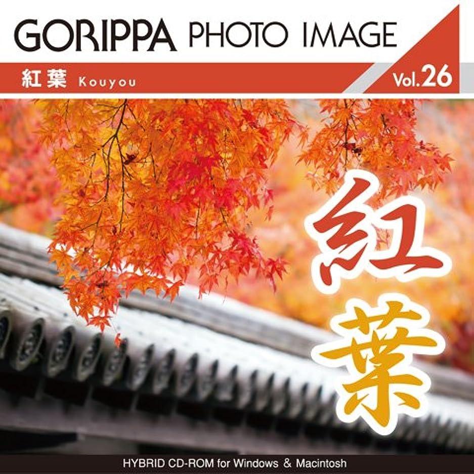 GORIPPA PHOTO IMAGE vol.26?紅葉?
