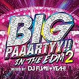 ビッグ・パーティー!! イン・ザ・EDM 2・ミックスド・バイ・DJ FUMI★YEAH!