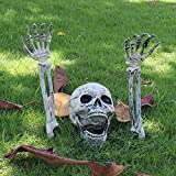 Cozyswan 頭蓋骨+アーム 3点セット スケルトン リアル プラスチック 肝試し 幽霊シミュレーション 飾り インテリア ハロウィン 余興 パーティー 骸骨 お化け屋敷 動くでき