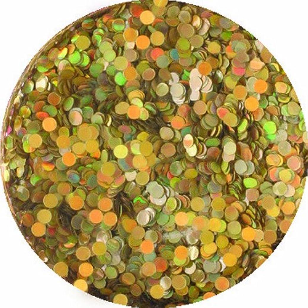 全体ローマ人食物ビューティーネイラー ネイル用パウダー 黒崎えり子 ジュエリーコレクション ホロシルバー丸1mm