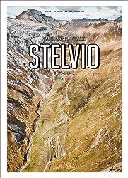 Porsche Drive Stelvio: Pass Portraits Italy 2757m
