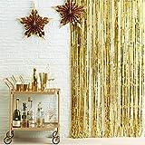 Hanakaze 3m*1mゴールド金属感キラキラなタッセルカーテン垂れ幕 飾りつけ フリンジカーテン 写真背景 誕生日飾り付け パーティー ウェディング