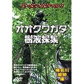 オオクワガタ樹液採集 [DVD]