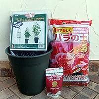 バラ用 ミニオベリスク B-120型と鉢と土と肥料のセット[つるバラの栽培に!] ノーブランド品