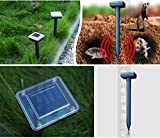 (2台セット) 庭の庭太陽光発電モル、マウスハタネズミ、料金、ヘビ、害虫やげっ歯類リペラのための齧歯類音波リペラー害虫駆除