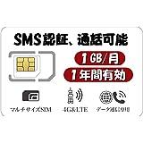 日本 プリペイドSIM 1GB/月1年間有効 4G-LTE対応 Docomo回線 データ通信専用SIMカード (1GB SMS付き)