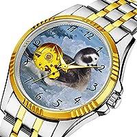 時計、機械式時計 メンズウォッチクラシックスタイルのメカニカルウォッチスケルトンステンレススチールタイムレスデザインメカニ (ゴールド)-894. Oldsquaw 海の氷の上に長く尾をつけたアヒル