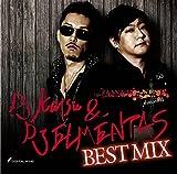 RAVERS NEST presents DJ katsu & DJ ELEMENTAS BEST MIX