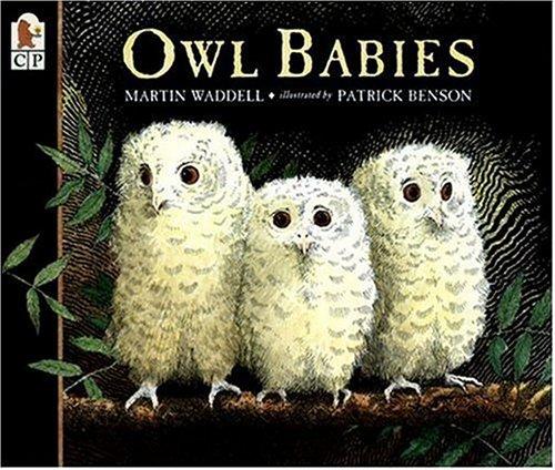 Owl Babiesの詳細を見る
