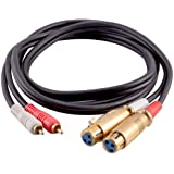 Seismic Audio Premium 6 Foot XLR Female to Dual Male Patch Cable-XLRF to 2-RCA (SA-DRCXLF6)