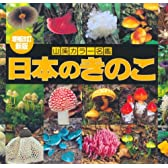 増補改訂新版 日本のきのこ (山溪カラー名鑑)