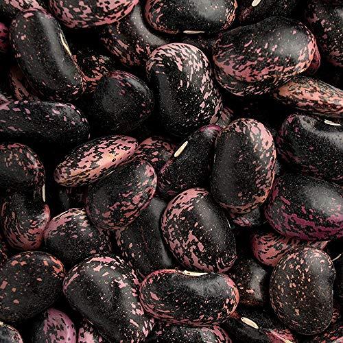 紫花豆 - 北海道産 国産 (25kg業務用)