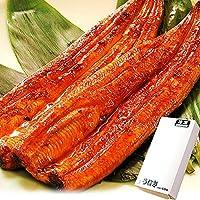 国内産 鰻(うなぎ) 長蒲焼セット (簡易箱・蒲焼2本)