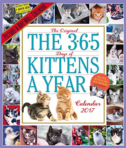 The 365 Kittens-a-Year 2017 Calendar