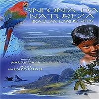Sinfonia Da Natureza Brazilianlandscapes