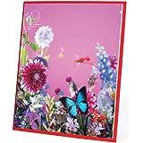 アートプリントジャパン 2020年 M/mika ninagawa カレンダー(卓上) vol.226 1000111678
