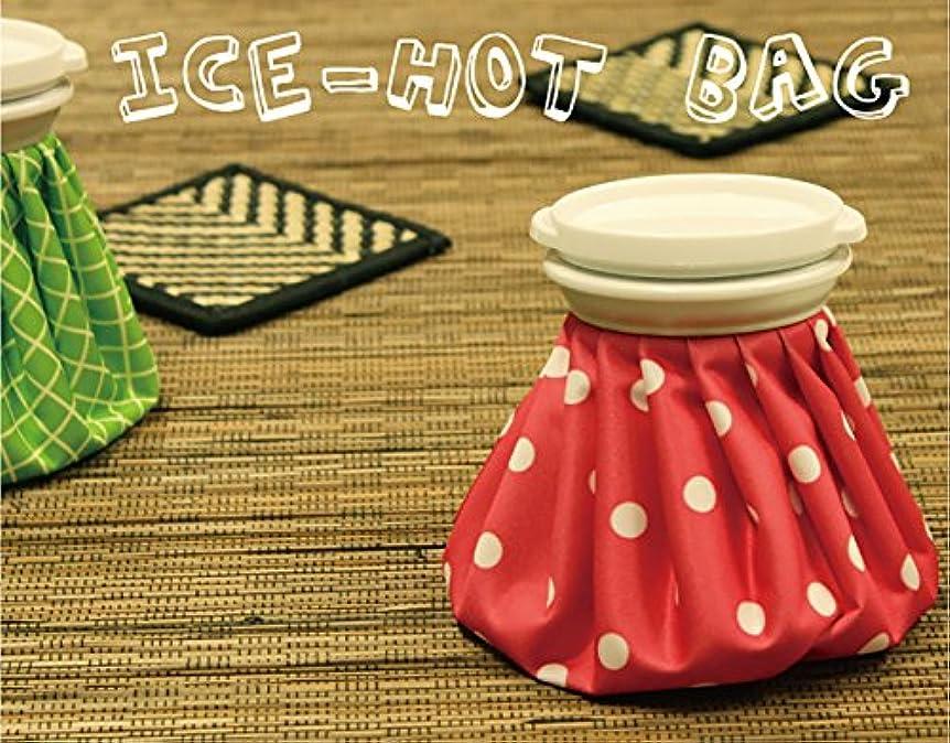 未接続遊具軽食コールドホットバッグ6インチサイズ 氷のう (ブルードット)