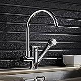 Auralum キッチン 水栓 ハンドシャワーヘッド ノズル伸縮 スプレー 蛇口 混合栓 クロームメッキ仕上げ 取り付けホース付き