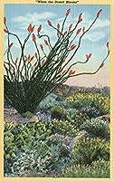 開花中のサボテンの景色 24 x 36 Giclee Print LANT-10225-24x36