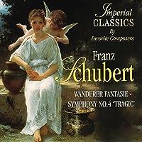 Wanderer Fantasie-Symphony No 4 Tragic