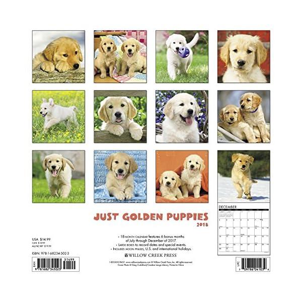 Just Golden Puppies 201...の紹介画像2
