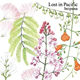 Lost in Pacific