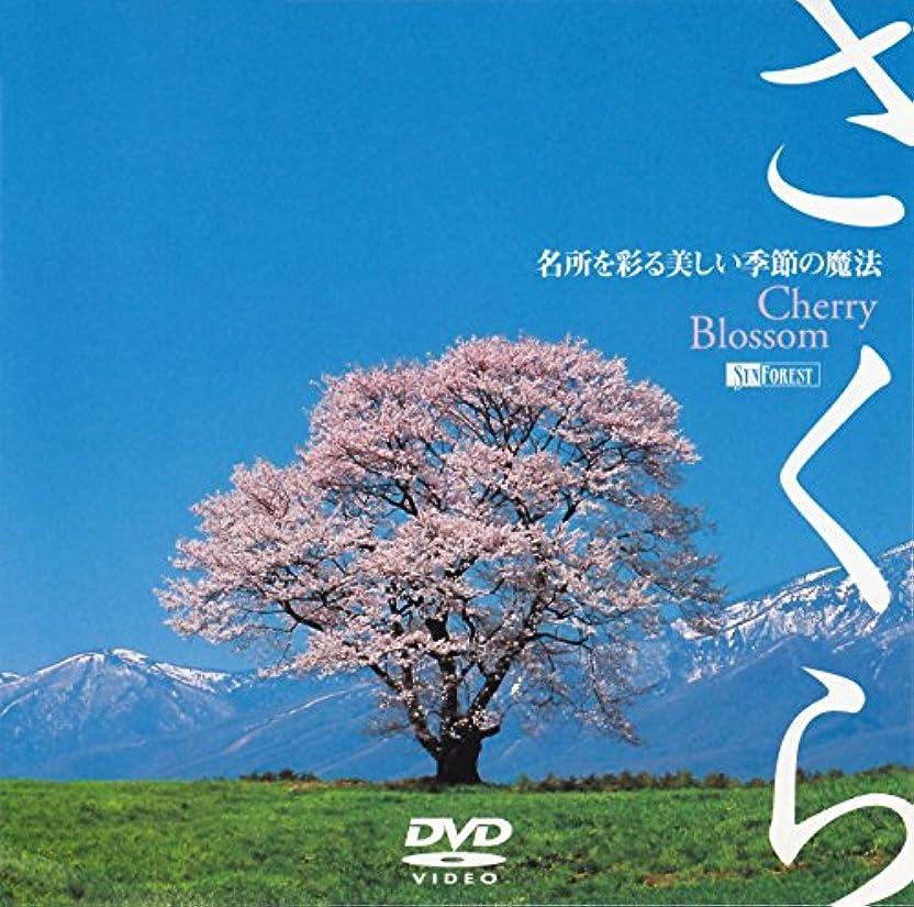 どうやってドラマ協定シンフォレストDVD さくら -名所を彩る美しい季節の魔法- Cherry Blossom