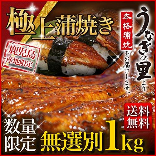 ホロニックフーズ 訳あり うなぎ 蒲焼き 国産(長焼き4本〜8本※1本づつ真空パック)