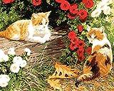 CaptainCrafts 新しい DIY 数字油絵 キット大人のための40 x 50 cmの絵画 初心者の子供たち - 花の子猫、二匹の猫 (フレーム付き)