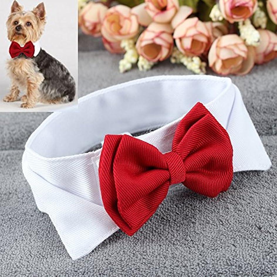 オレンジ極めて重要なウガンダXUTXCKA ペット子犬子猫犬猫調整可能な蝶ネクタイ襟ネクタイちょう結びの装飾ボウタイ結婚式の装飾アクセサリー