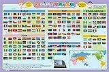なるほどKids はっておぼえる 世界の国旗 (お風呂 学習 ポスター)