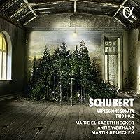 Schubert: Arpeggione Sonata/Pi