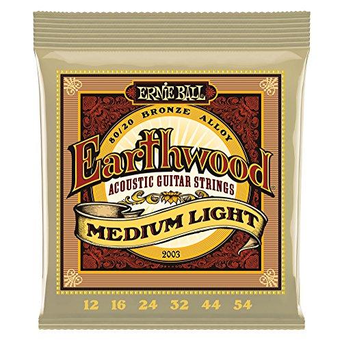 ERNIEBALL(アーニーボール)『Earthwood80/20BronzeMediumLight2003』