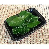 タイ産 新鮮輸入 バイマックル (コブみかんの葉)(20g) タイカレー トムヤムクン タイ料理 食材 エスニック ハーブ