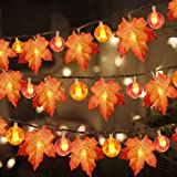 3 Pack Halloween&Thanksgiving Decorations Maple Leaves Fall Garland String Lights,30ft 60LED Waterproof Seasonal Light for In
