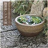 信楽焼 10号窯肌 すいれん鉢 メダカ鉢 睡蓮鉢 スイレン鉢 金魚鉢 水鉢 陶器 su-0140 (窯肌色)