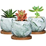 SQOWL 3.2 inch Marble Ceramic Succulent Planter Pot Indoor Cute Small Cactus Herb Flower Planters with Bamboo Tray Set of 3