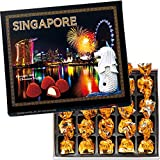シンガポール 土産 シンガポール トリュフチョコレート 1箱 (海外旅行 シンガポール お土産)