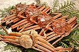 【11月6日漁解禁!】漁期2か月だけの貴重な冬の赤い宝石箱 石川県産<非冷凍生>香箱蟹(雌ズワイガニ)(約150g×5杯) せいこがに セコガニ