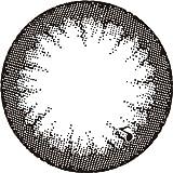 アレグロ(Allegro)2Week【2週間カラコン】【1箱4枚入り/DIA14.0mm/BC8.6】 (0.00(度なし), ソプラノブラック)