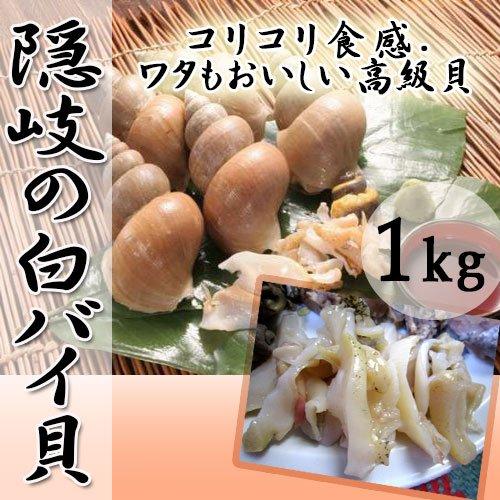 隠岐の白バイ貝 1kg 日本海隠岐活魚倶楽部 クセがなく甘みのある貝 コリコリ食感でワタもおいしい高級貝