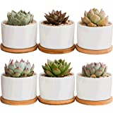 Succulent Pots, Krisami White Mini 3.15-inch Ceramic Flower Planter Pot with Bamboo Tray, Small Plants Ceramic Flowerpot, Gar