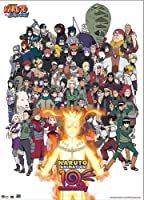 Great Eastern Entertainment 60047 Naruto Cast 10th Anniversary Wall Scroll, 33 by 44-Inch [並行輸入品]