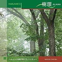 ハルニレ2 樹環 (JU-KAN) 528Hz ヒーリング 著作権フリー
