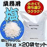 業務用 塩 塩化ナトリウム 5kg x 20 お試しサイズ 小袋 小分け 工業用 寒剤 空調