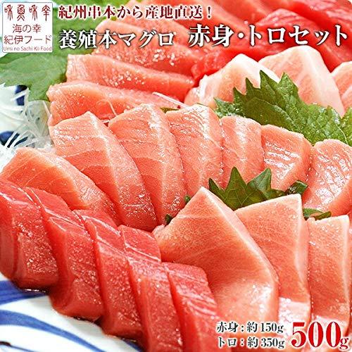 紀州串本産 養殖本マグロのトロ・赤身セット500g