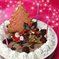 【12月22日お届け限定】★Xmas★フロム蔵王デコレーションアイスケーキ【送料込み】