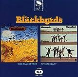 Blackbyrds / Flying Start by BLACKBYRDS (1994-07-25)