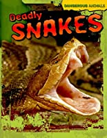 Deadly Snakes (Dangerous Animals)