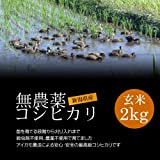 【お土産】無農薬米コシヒカリ 玄米 2kg/アイガモ農法で育てた安心・安全の新潟米